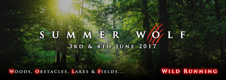 Summer Wolf promo banner